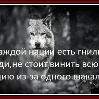 Анкета Alexey Davydov