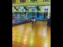 Круговая тренировка на ноги от Алексея Егорова👍👊💪
