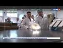 Новости на Россия 24 В подмосковном Ступино будут печь мексиканские тортильи