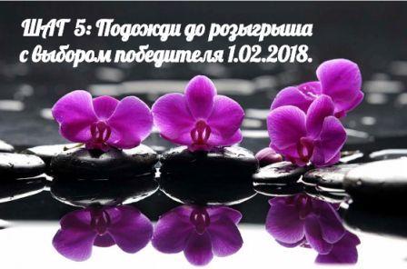 https://pp.userapi.com/c840430/v840430956/491b6/vZ0sF19KB0c.jpg