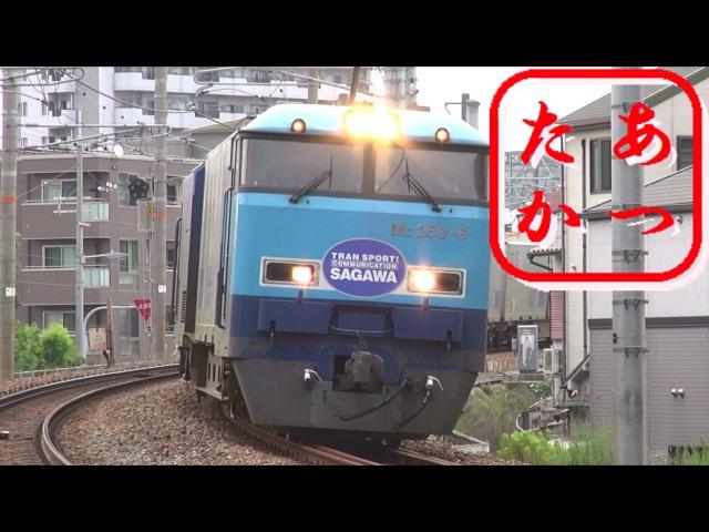最速貨物列車 スーパーレールカーゴ 高速通過集 JR貨物M250系電車 51レ high speed freight train