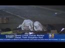 Mother Killed, Teen Daughter Hurt In Bronx Crash