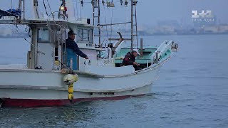 Япония смертоносная рыба фугу и город роботов Мир наизнанку 2 серия 9 сезон смотреть онлайн без регистрации