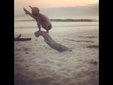 "David Robson on Instagram: ""The real truth behind all the beautiful asana videos. Enjoy. 😂😂😂 ... ✨Mar 17-30, Goa @purplevalleyyoga ✨Apr 4-8, Taipei..."