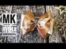 Бантики из атласной ленты 9,5см Своими руками легко МК Канзаши Алена Хорошилова tutorial ribbon bows