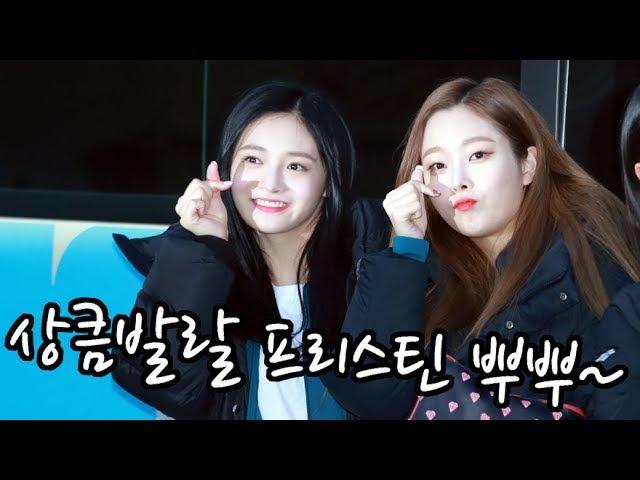 [S영상] '아육대 출근길' 위키미키-우주소녀-구구단-프리스틴-다이아, '다4988