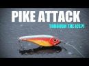 Pike Attacks Lure Through the Ice UNBELIEVABLE