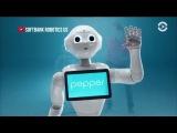 Интервью с роботом Pepper