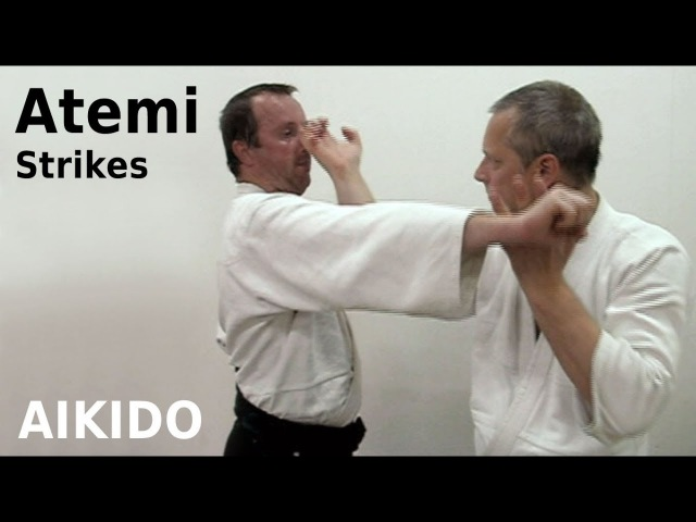 Aikido - ATEMI - striking techniques, by Stefan Stenudd