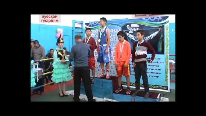 Облыстық 2006-2007 жылғы балалар арасындағы бокстан ашық турнир