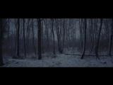 QNTAL - Nachtblume (2018) __ Official Video __ Drakkar Entertainment