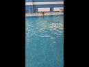 Ноги кроль на груди в стрелочке. 2 раза по одному бассейну с задержкой дыхания.