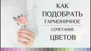 Как подобрать гармоничное сочетание цветов. Помощник в подборе цветовых решений.