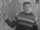 Аркадий Райкин, Евгений Леонов и Олег Анофриев Начальник1966