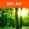 Сообщество специалистов по безопасности Sec.Ru