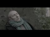 HELMUT LOTTI. ROOFDIER (2013)