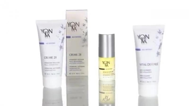 Сегментация продуктов Yon-Ka Paris