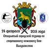 Открытый городской турнир по СНБ