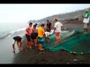 Амед местные ловят рыбу