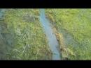 болотоход по болоту