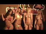 Miss Budlight 2016 Bikini Contest - Dallas Bull Tampa