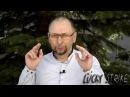 Тимур Gazi об армянском факторе и о многом другом