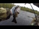Рыбалка в Северной Карелии День 9 Дорога к порогам и живописные берега со скалами