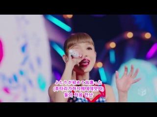 トリせツ(취급 설명서)-Nishino Kana(일본어/한글 자막 코딩)
