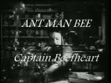 CAPTAIN BEEFHEART -- ANT MAN BEE