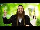 71 ¿El que Estafa Gana más En el Jardín de la Fe Rab Yonatán D Galed
