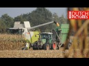 Mais dreschen mit 2x CLAAS Mähdrescher   Lohnbetrieb Teipen   Mais dorsen   Threshing maize