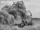 Заготовка кормов 1970 | Stocking up of fodder for cattle 1970