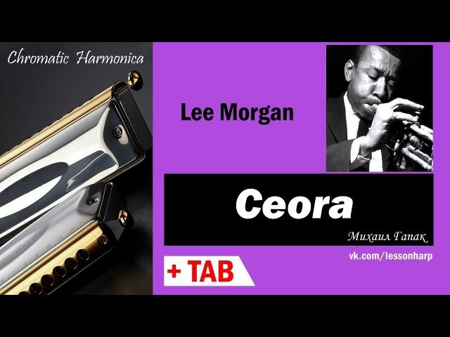 Ceora - Harmonica TAB - Михаил Гапак - Hohner CX12 Jazz