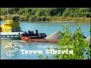Река живет Алтайский край, река Обь ниже слияния рек Бия и Катунь