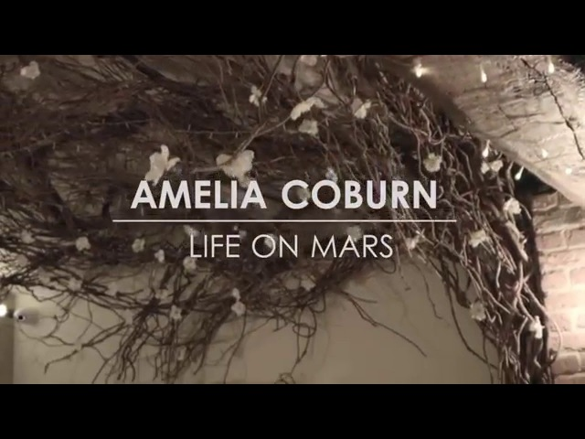 Amelia Coburn - Life On Mars (David Bowie cover)