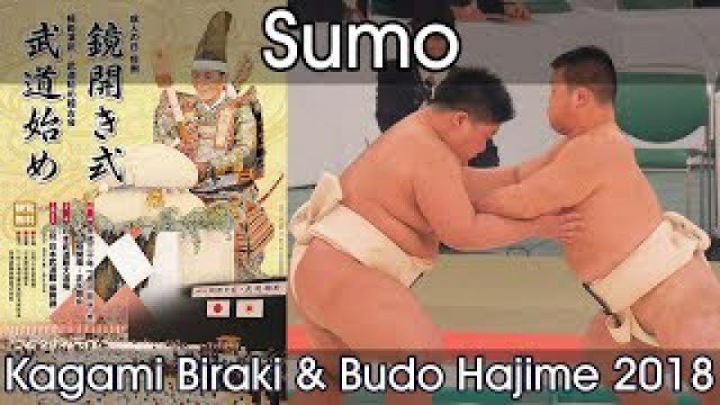 Sumo Demonstration Kagamibiraki 2018