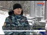 День открытых зверей в кинологической службе Иркутской области. Как воспитывают поисковых собак?