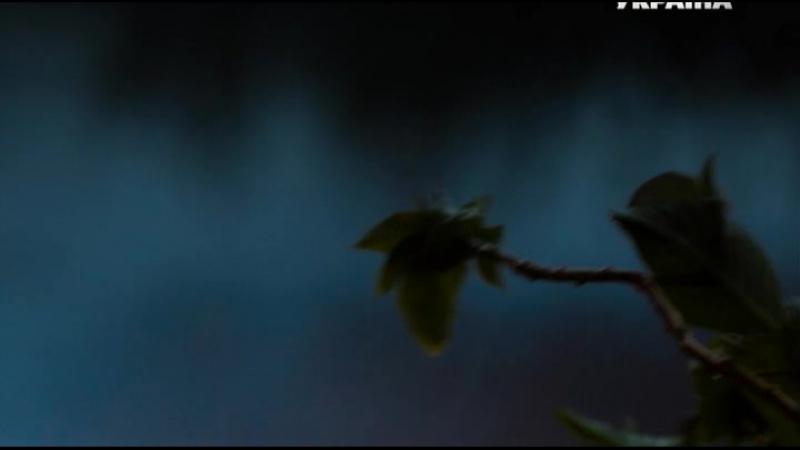 Дворняжка ляля 2 сезон 18 серия