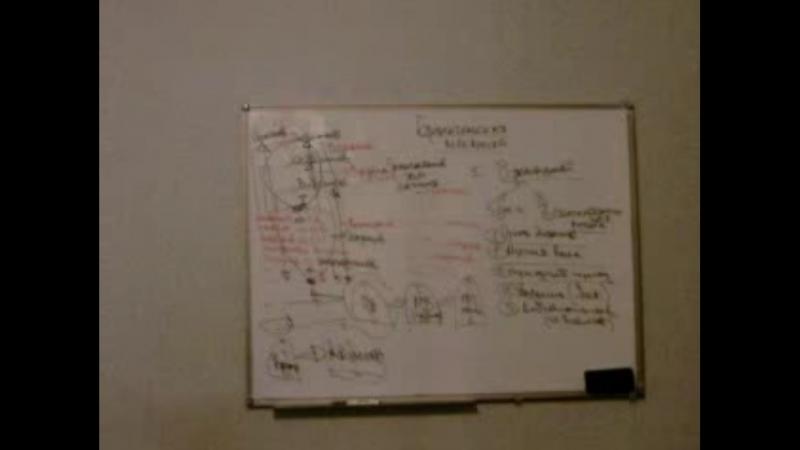Брененгельская механика. ч-1 (научная встреча, 2011 год). Олег Мальцев