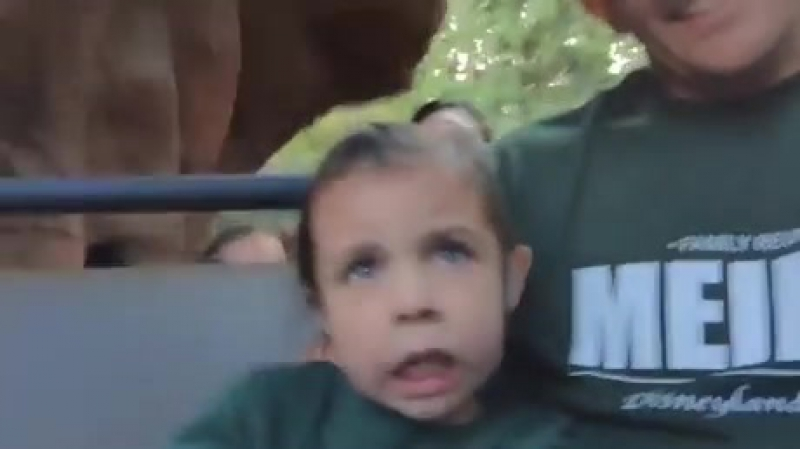 Американские горки и дети :D
