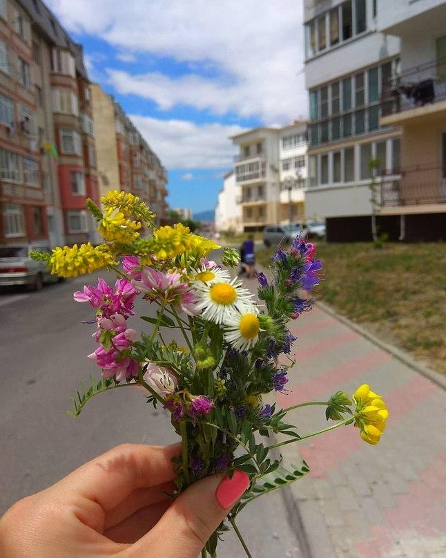 Надюшка Четверик | Москва