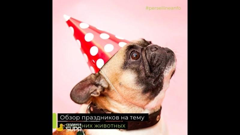 Праздники на тему домашних животных