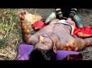 Mahesh massaged (720p)