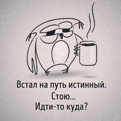 Фото №456251061 со страницы Григория Беляева