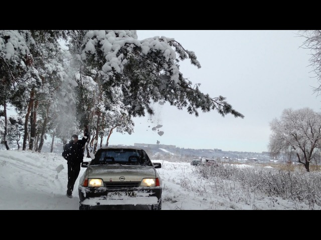 Зима в разгаре заснеженый лес Харьков журавлевка