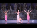 Royal Opera Ballet The Nutcracker Coffee Arabian Dance Ovation