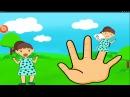 Семья пальчиков Finger Family Rhymes