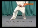 Cheng Style BaGua Mud Wading Step and 8 Palms w Liu Jing-Ru