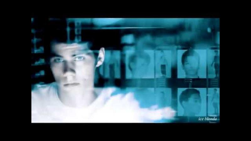 Бегущий в лабиринте The Maze Runner Музыкальная нарезка 2