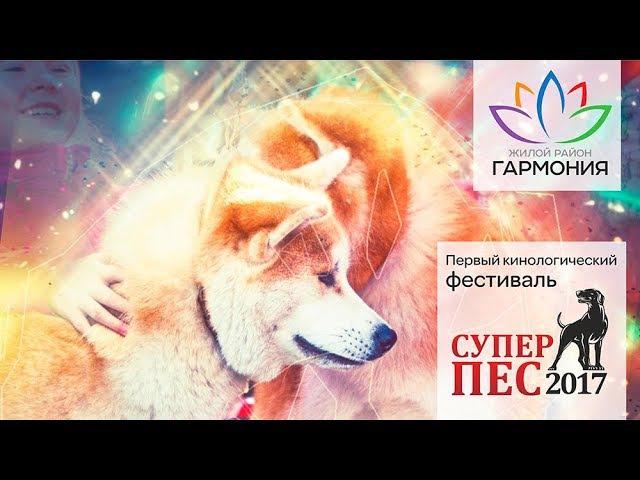 Открытие дрессировочной площадки для собак в ЖР Гармония Михайловск Ставроп